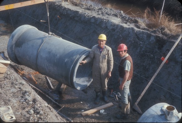 Gilbert Road Trunk Sewer - Laying  Pipe
